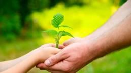 Cultivar la Sabiduría es amarse