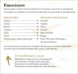 Consciencia y Emociones